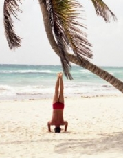 Palm Tree and Headstand