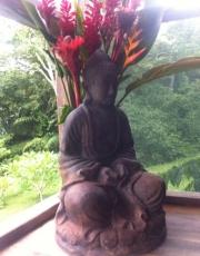 Osa Buddha at Tierra