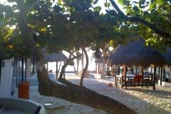 Tulum, Mexico Shriyoga Retreats 2009-2011